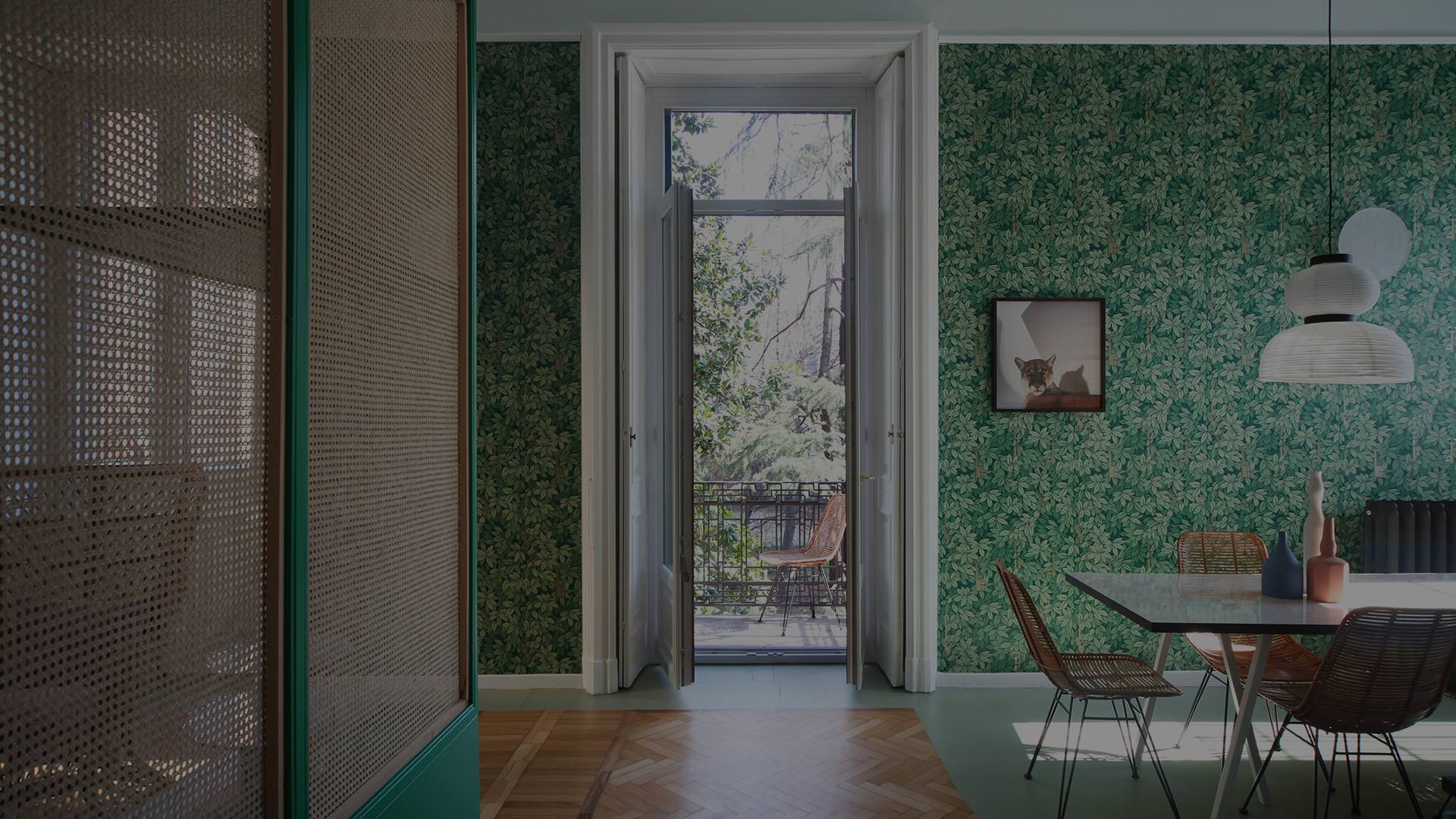 adelaide wallpaper